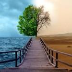 Коалиция за климата, България